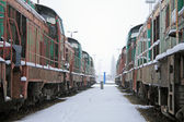Trains in the depot — Stock Photo
