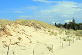 Sanddyner — Stockfoto