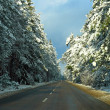 Foto Stock: Road in winter forest