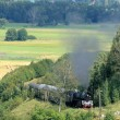 Landscape with a steam train — Stock Photo #2176208