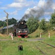 Retro steam train — Stock fotografie #2176271