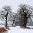 Winter landscape — Stock fotografie #2176444