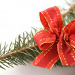 Pine branch with a red bow - Stock Photo