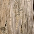 Wooden texture — Stock Photo #1896156