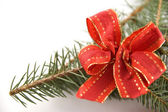 Pine branch with a red bow — Stock Photo