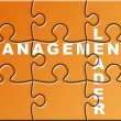 Management Puzzle — Stock Photo