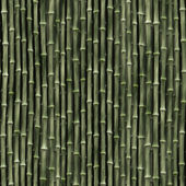 Bamboo Background Pattern — Stock Photo