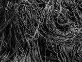 Black and white image of a bunch of ropes — Stock Photo