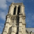 Notre-Dame cathedral tower - Stock Photo