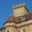 Castle of castelnaud - Stock Photo