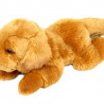 Plush toy dog — Stock Photo