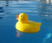 Happy rubber duck — Stock Photo