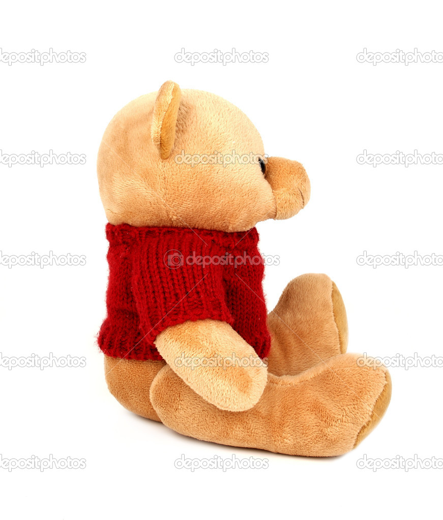 Teddy with red sweater isolated on white background  Stock Photo #1906748