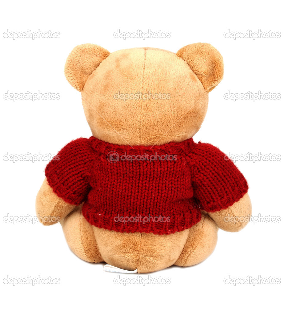 Teddy with red sweater isolated on white background — Stok fotoğraf #1906749