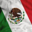 Stock Photo: Mexican flag