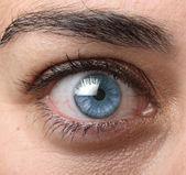 Blue open eye — Stock Photo