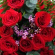 Red roses background — Stock Photo #2435055