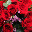 Red roses background — Stock Photo