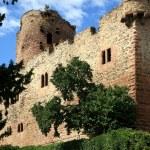 Castle in Kintzheim – Alsace, France — Stock Photo #1926481