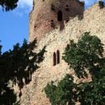 Castle in Kintzheim – Alsace, France — Stock Photo #1926483