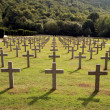 Rows of tombstones in a military graveya - Foto Stock
