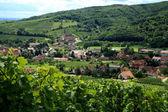 Vesnice v provincii alsasko, francie — Stock fotografie