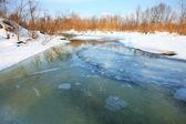 Frozen river. — Stock Photo