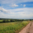 Field road at a summer sunny day — Stock Photo