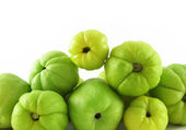 Fruits of quinces — Stock Photo