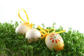 Easter eggs on cress — Stock Photo