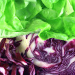 Cabbage and lettuce — Stock Photo