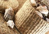 Shells in wicker — Stock Photo