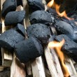 Kindling with charcoal and wood — Stock Photo