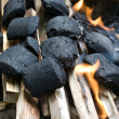 Kindling with charcoal and wood - Stock Photo