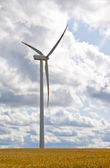 Wind turbine from behind — Stock Photo
