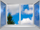 View from the window of blu sky and tree — Stock Photo