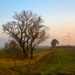 Stock Photo: Autumn landscape in poland pomerania