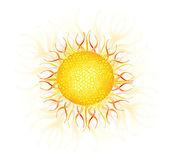 Sun — Stock Vector