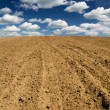 Stock Photo: Ploughed field.