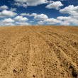 Ploughed field. - Stock Photo
