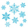 Vector set of snowflakes — Image vectorielle