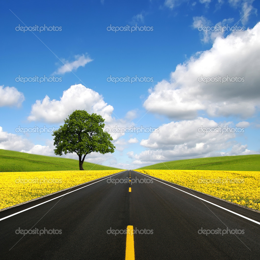 The road forward — Stock Photo #1846702
