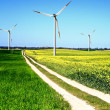 Wind turbines, summer landscape — Stock Photo