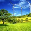 Windmill and green meadow - Stock Photo