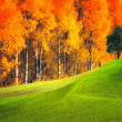 Autumn landscape - Stock Photo