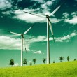 Environmental wind, global ecology - Stock Photo