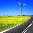 Royalty-Free Stock Photo: Open road and wind turbines