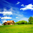 House on green hill — Stockfoto
