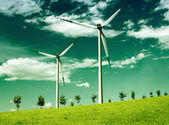 Environmental wind, global ecology — Stock Photo