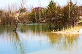 如诗如画的春天湖景观 — 图库照片